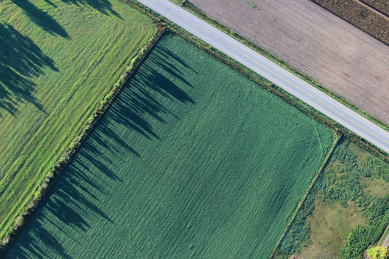 土地使用分區與用地類別-呈陽